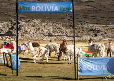 Bolivia18-092